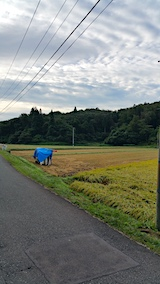20161001山へ向かう途中の様子田んぼ2