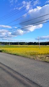 20161001山へ向かう途中の様子午後田んぼ1