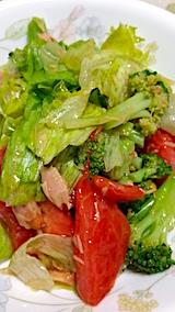 20161007晩ご飯トマトとレタスのサラダ