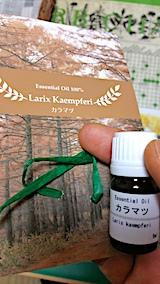 20161104精油カラマツ