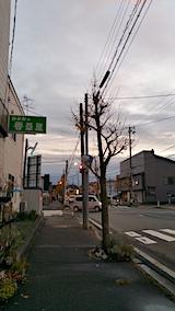 20161119外の様子夕暮れ時1