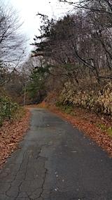20161202山へ向かう途中の様子峠道3