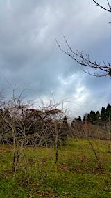 20161205山の様子雨雲近づく