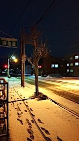20161207外の様子朝1