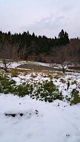20161207山の様子ラベンダー畑