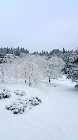 20170110山の様子雪景色2