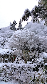20170110山の入り口の様子雪景色