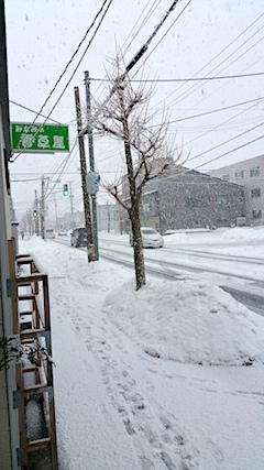 20170210外の様子朝大雪1