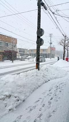 20170210外の様子朝大雪2