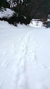 20170217ラベンダーの畑へと向かう急な坂道の様子