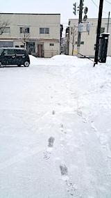 20170220外の様子朝雪寄せ途中
