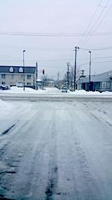 20170220外の様子昼前雨で道路の雪とけだす1