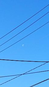 20170320外の様子朝お月さま