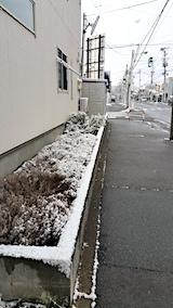 20170324外の様子朝うっすらと雪が5
