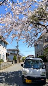 20170424太平川沿いの桜宮田散策路3