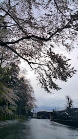 20170429会津美里町伊佐須美神社の桜