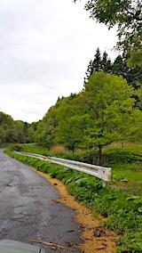 20170513山へ向かう途中の様子峠道