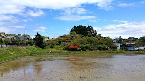 20170514外の様子昼前ツツジの咲く丘の風景