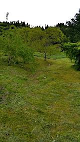 20170514ラベンダー畑の周り草刈り後の様子7