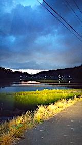 20170515山からの帰り道の様子田んぼ