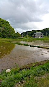 20170516山の入り口の様子田植えが終わる1