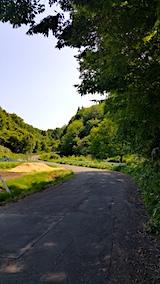 20170529山へ向かう途中の様子峠道