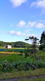 20170605山の様子青空