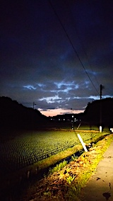20170605外の様子夜のはじめ頃田んぼ