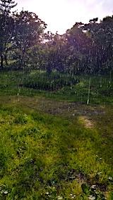 20170610激しく雨が降り始める