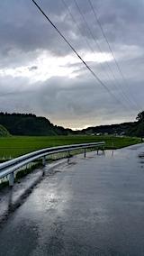 20170610山からの帰り道の様子田んぼ