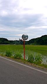 20170615山へ向かう途中の様子田んぼとタチアオイ