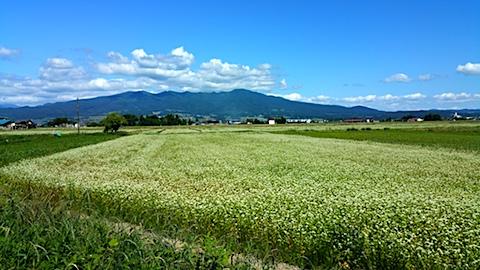 20170617会津磐梯山とそば畑
