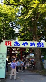 20170617会津美里町あやめ祭り6