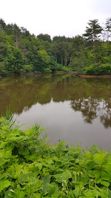 20170701石倉山公園散策2