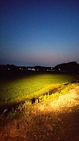 20170707山からの帰り路の様子田んぼ