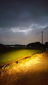20170712山からの帰り道の様子田んぼ