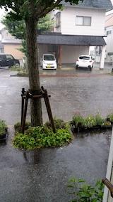 20170716外の様子朝大雨2
