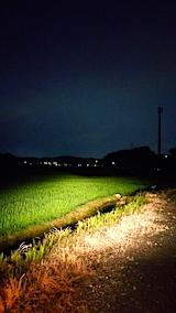 20170717山からの帰り道の様子田んぼ