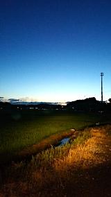 20170718山からの帰り道の様子田んぼ
