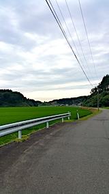 20170725山からの帰り道の様子田んぼ