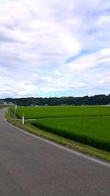 20170730山へ向かう途中の様子田んぼ