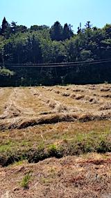 20170805山へ向かう途中の様子雑草の刈り取り