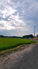 20170811山からの帰り道の様子田んぼ
