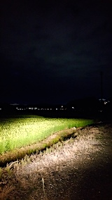 20170815山からの帰り道の様子田んぼ