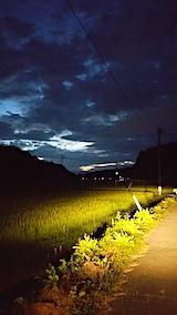 20170816山からの帰り道の様子田んぼと空