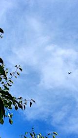 20170818山の様子飛行機