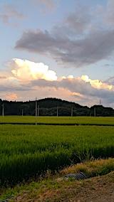 20170819外の様子夕方山の入り口