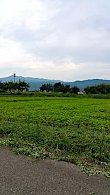 20170828そば畑