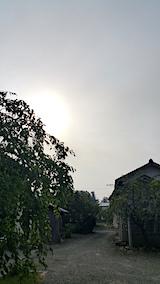 20170829外の様子朝1