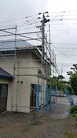 20170830塗装作業の終わった屋根2